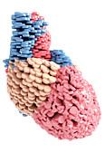Pills Heart Print by MedicalRF.com