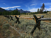 Split Rail Fence Framed Prints - Pilot Peak Framed Print by Clare VanderVeen