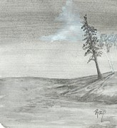 Robert Meszaros - pine and birch