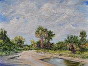 Dirt Road Paintings - Pine Island Puddle by AnnaJo Vahle
