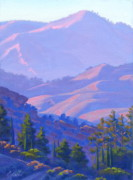 Cliffs Paintings - Pine Trees of Viewridge by Elena Roche