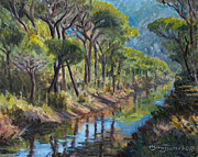Marco Busoni Art - Pine Wood Reflections by Marco Busoni