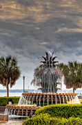 Palmetto Photos - Pineapple Clouds by Drew Castelhano