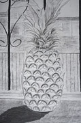 Pencil Pastels - Pineapple in window by Jose Valeriano