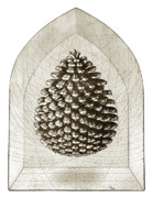 Printmaking Prints - Pinecone Print by Charles Harden