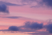 Arkansas Art - Pink And Blue Clouds by Wesley Hitt