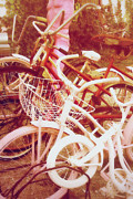 Found Objects Posters - Pink and white bikes Poster by Toni Hopper