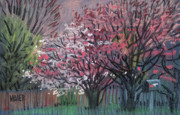 Spring Pastels Originals - Pink and White Dogwoods by Donald Maier