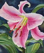 Sharon Freeman - Pink and White Lily