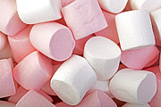 Geometric Shapes Posters - Pink and White marshmallows Poster by Jane Rix