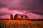 Farm Scene Framed Prints - Pink Barn  Framed Print by Emily Stauring