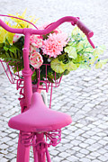 Flower Basket Photos - Pink Bike by Carlos Caetano