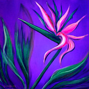 Gina Gray Paintings - Pink Bird of Paradise by Gina De Gorna