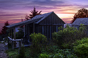 Country Cottage Photos - Pink Dawn by Debra and Dave Vanderlaan