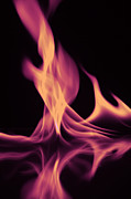White Colors Posters - Pink Fire on Water Poster by M K  Miller