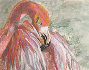 Reds Pastels Prints - Pink Flamingo Print by Linda Hubbard Red Cap Art