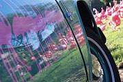 Flamingos Art - Pink Flamingos Reflected on Car Door by Jeremy Woodhouse