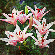 Natural Mixed Media Prints - Pink Floral Choir Print by Andee Photography