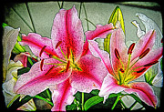 Impressionist - Pink Flowers by Chuck Staley