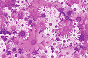 Photography Painting Prints - Pink Flowers Print by JQ Licensing