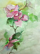 Arkansas Paintings - Pink Flowers on Branch by Robin Miller-Bookhout