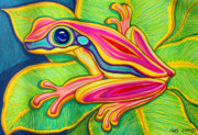 Whimsical Frogs Posters - Pink Frog on leafs Poster by Nick Gustafson