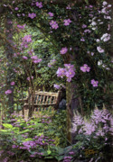 Original Oil  Doug Kreuger Paintings - Pink Garden Respite by Doug Kreuger