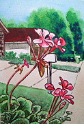 Front Yard Framed Prints - Pink Geranium Sketchbook Project Down My Street Framed Print by Irina Sztukowski