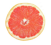 Grapefruit Photo Framed Prints - Pink Grapefruit Framed Print by James Bo Insogna