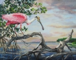 Spoonbill Paintings - Pink Lady by Dianna  Willman