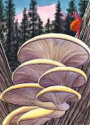 Mushrooms Paintings - Pink Like Me by Catherine G McElroy