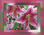 Natures Flower Garden Mixed Media Posters - Pink Lily Design Poster by Debra     Vatalaro