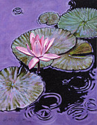 Lily Pond Originals - Pink Lily in the Rain by John Lautermilch