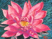 Cards Pastels Originals - Pink Lotus by Abbie Groves