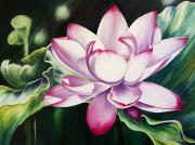 Floral Art Painting Framed Prints - Pink Lotus Blossom Framed Print by Barbara Eberhart - Printscapes