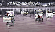 Kennebunkport Art - Pink Morning by Brenda Giasson
