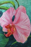 Donna Pierce-clark Art - Pink Orchid by Donna Pierce-Clark