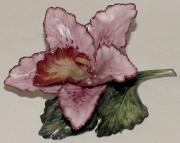 Orchids Ceramics - Pink Orchid by Shirley Heyn