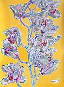 Pink Flower Branch Paintings - Pink orchid by Vitali Komarov