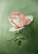 Flower Still Life Prints Posters - Pink Peach 3 Rose Flower Painting Art Print Poster by Sally Holt