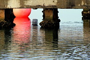 Floats Photos - Pink Pearl Pilings by Karen Wiles