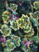Outdoor Still Life Paintings - Pink Pelargonium by Alexandra Cook