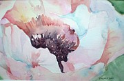 Barbra Joan  - Pink Poppy