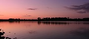 Martina Fagan - Pink sky at night..............