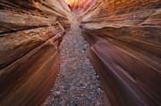 Valley Of Fire Posters - Pink Slot Poster by Joseph Rossbach