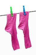 Clothes Pins Photos - Pink Socks by Frank Tschakert