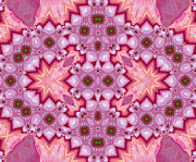 Seasons Posters - Pink Splash Mandala Abstract Poster by Zeana Romanovna