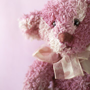 Ethiriel Photography - Pink Teddy with Bow ...