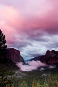 Tranquil Art - Pink Tunnel View by Ben Neumann