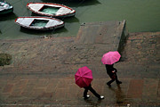 Wet Framed Prints - Pink Umbrellas Framed Print by Copyright Soumya Bandyopadhyay Photography